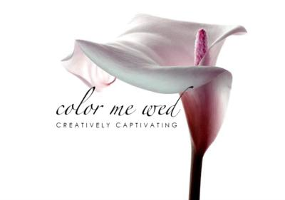 Color Me Wed | Atlanta, GA | Cinematic Videographer | Photo #1