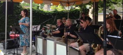 Avenue C Orchestra | Chicago, IL | Variety Band | Photo #8