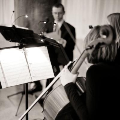 Calla String Quartet | Saint Paul, MN | String Quartet | Photo #5