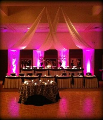 The Perfect Fit DJ, MC, & Event Advisor, LLC | Elgin, IL | DJ | Photo #8