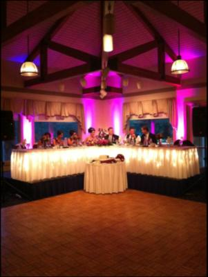 The Perfect Fit DJ, MC, & Event Advisor, LLC | Elgin, IL | DJ | Photo #2