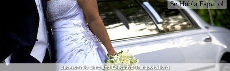 Twins Luxury Limousine