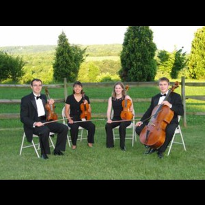 Nokesville String Quartet | Liya Ensemble