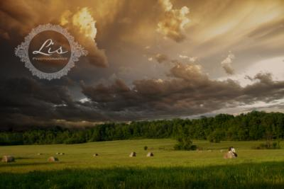 Lis Photography | Burlington, VT | Photographer | Photo #15