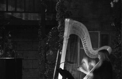 Kristin Lloyd | Napa, CA | Harp | Photo #1