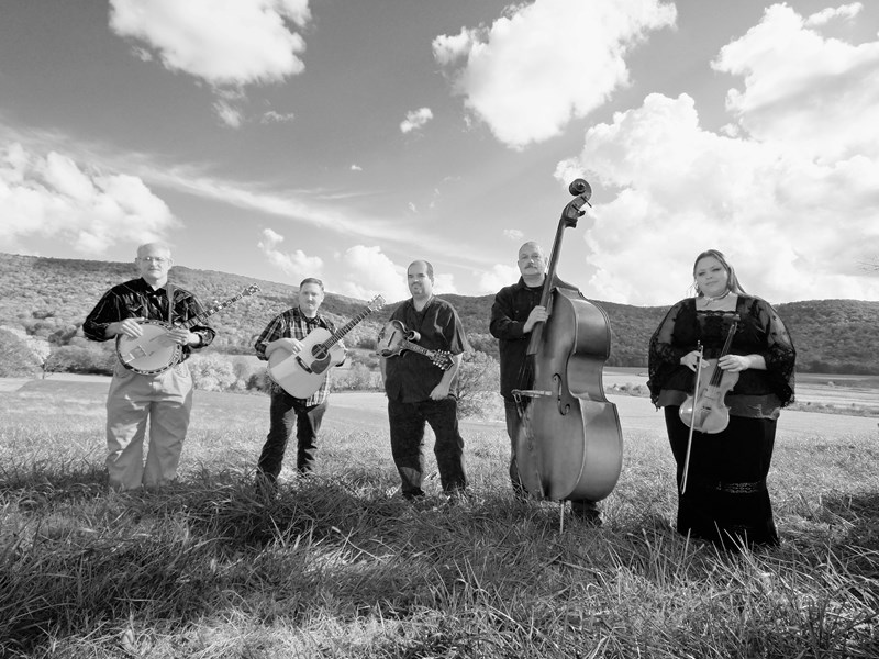 Barefoot Nellie & Co. - Bluegrass Band - Chattanooga, TN