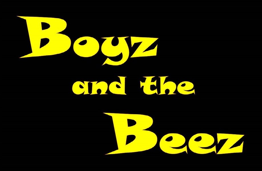 Boyz and the Beez