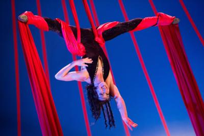Carey Hackett | Orlando, FL | Circus Act | Photo #2