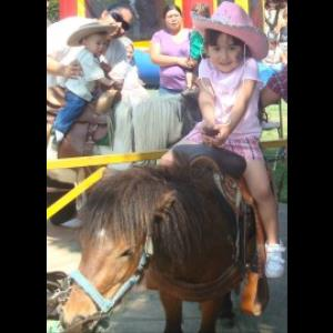 Fresno Animal For A Party | Wild Bill's Pony Ride & Carriage/California-Nevada