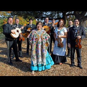 Mariachi Los Gallitos - Mariachi Band - Houston, TX