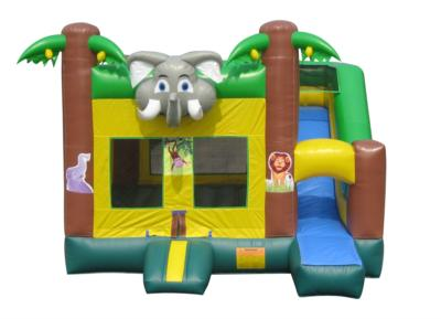 Adventure Quest Inflatables | Parkersburg, WV | Bounce House | Photo #4