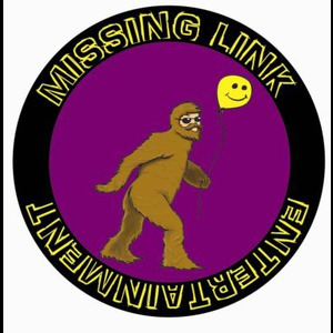 MissingLink Entertainment - DJ - Orlando, FL