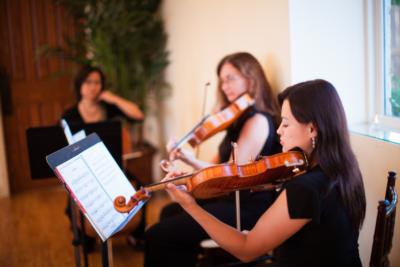 Harmony Strings | Houston, TX | Classical String Quartet | Photo #4