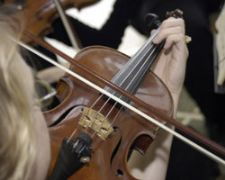 Harmony Strings | Houston, TX | Classical String Quartet | Photo #6