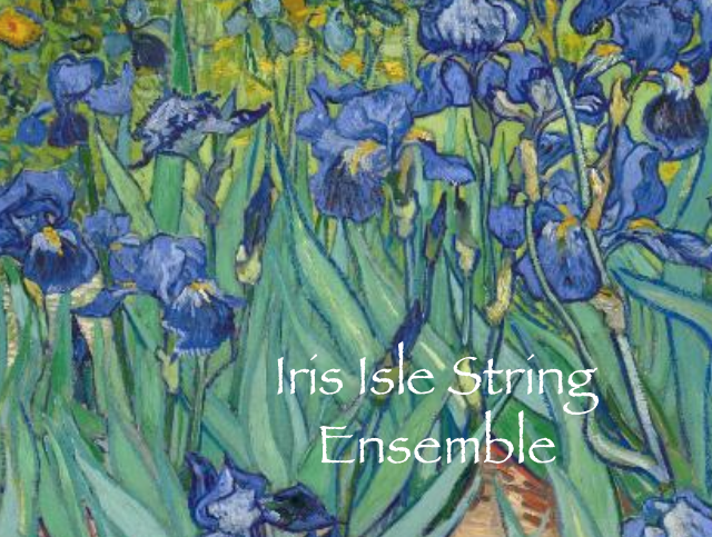 Iris Isle String Ensemble  - String Quartet - Crystal Lake, IL